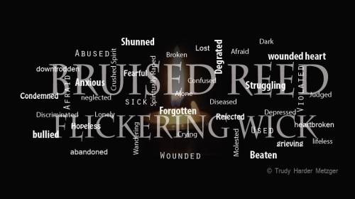 bruised-reed